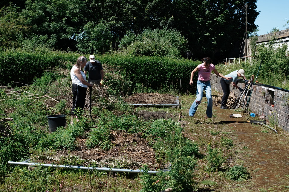 Friends of Granton Castle Walled Garden
