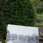 Images of Victorian Walled garden leans against hedge