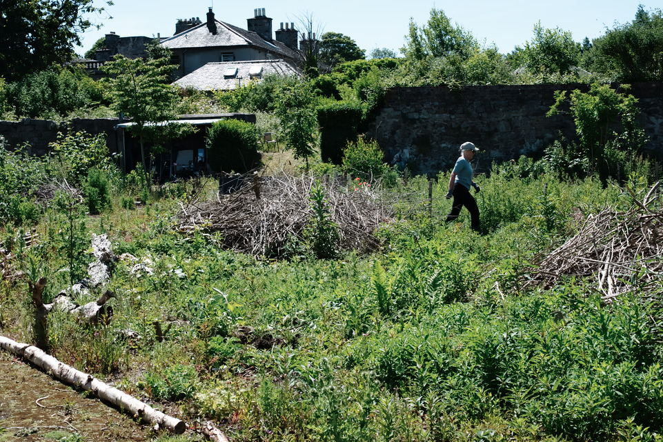 Friends of Granton Castle Walled Garden