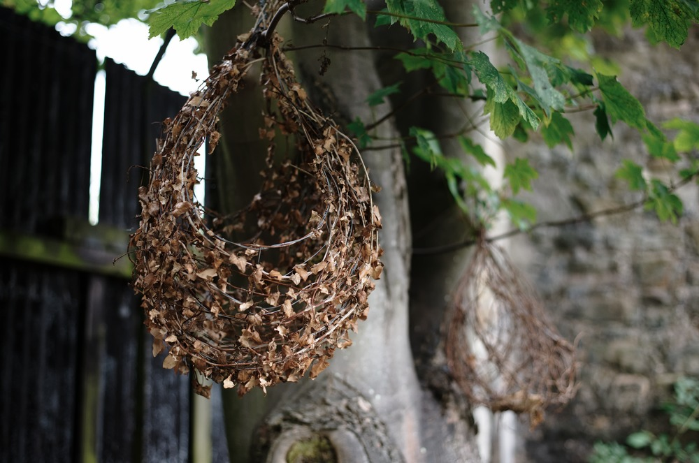 woven basket hanging from tree