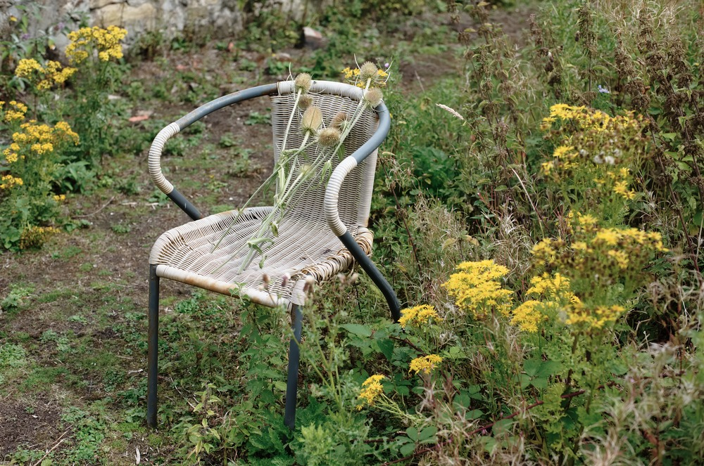wicker chair with dried flowers edinburgh scotland community garden