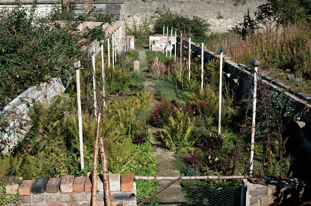 granton castle walled garden