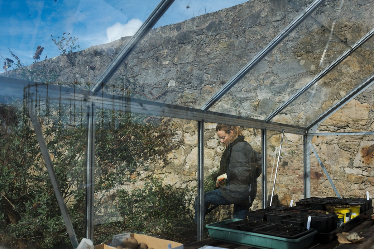 woman weeding through greenhouse