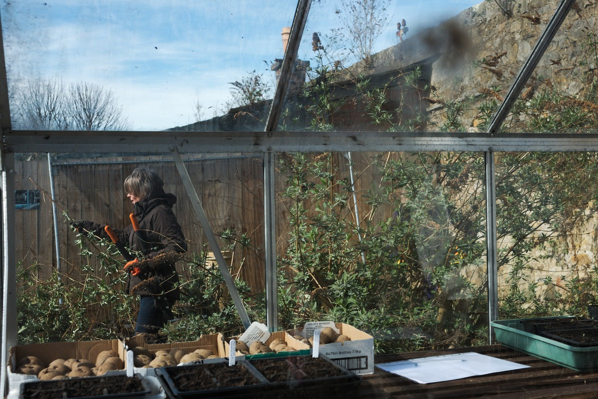 woman carrying gardening shears through greenhouse