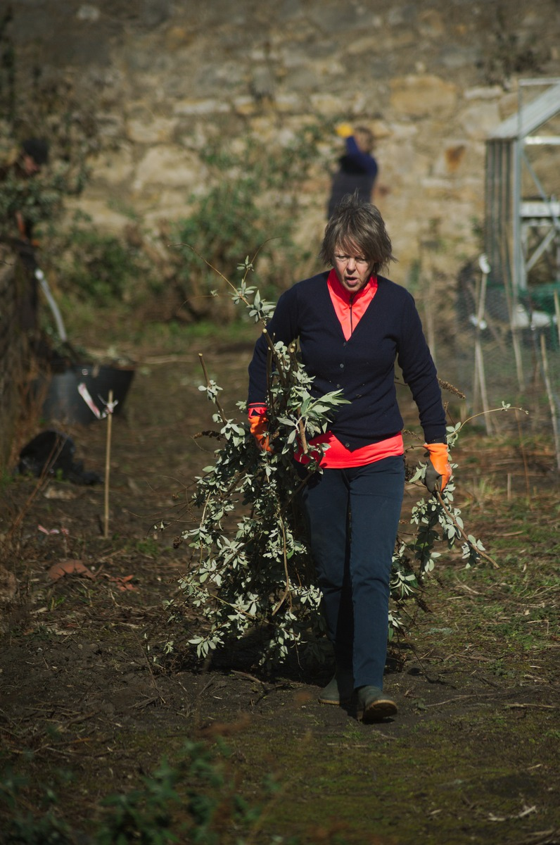 woman drags branches of weeds