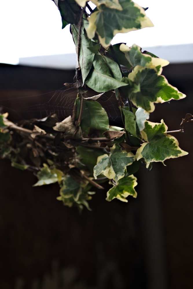 natural ivy wreath spiderweb